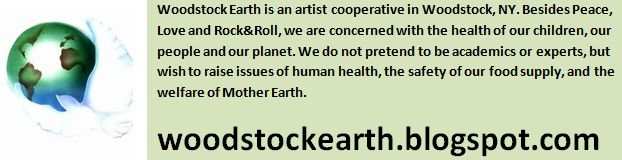 Woodstock Earth Blog