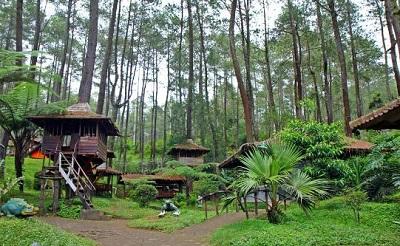 Wisata Menarik dan Edukatif di Bumi Perkemahan Cikole Lembang Bandung