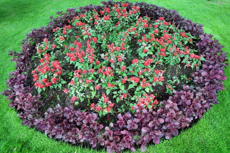 Casa decora o arte jardim e quintal for Jardines pequenos redondos