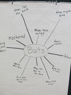 photo of: Brain mapping in Elementary School, Diagram of prior knowledge about 'Bats&quot; 