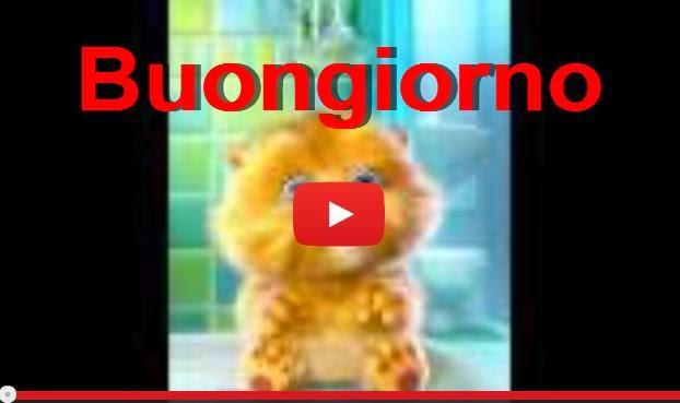 Buongiorno video for Immagini divertenti buon giorno