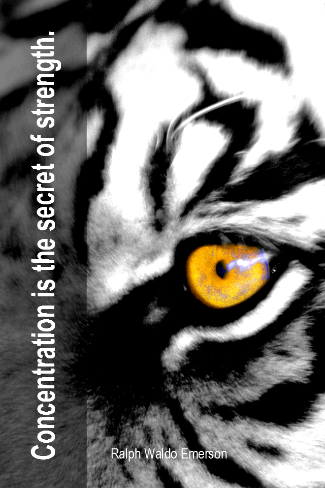 visual quote - image quotation for FOCUS - Concentration is the secret of strength. -  Ralph Waldo Emerson