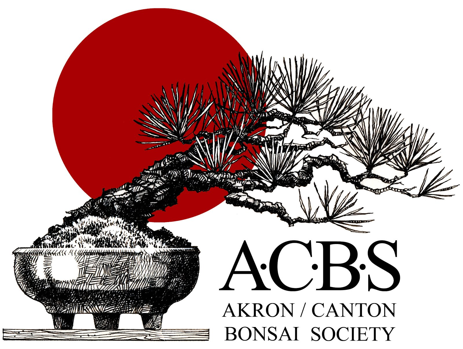 Akron Canton Bonsai -- Ohio  USA