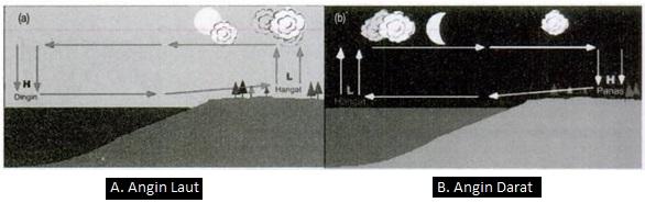 Apa Itu Angin Darat dan Angin Laut dan Bagaimana Proses Terjadinya Angin Darat dan Angin Laut