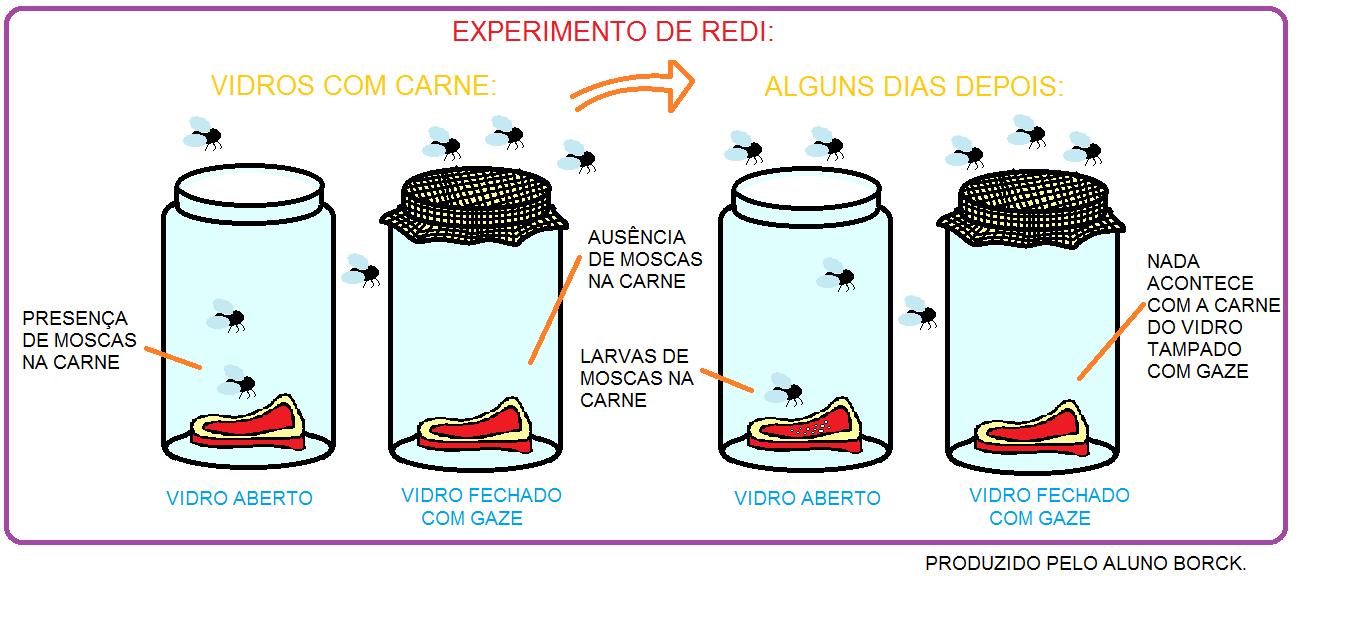 Bacterias Actuaciencia: enero 2016