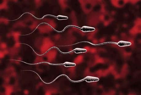 Sperma Keluar Setelah Bercinta / Berhubungan intim Badan Suami Istri ?