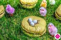 macaron nid