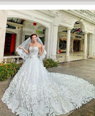 Bridal Celebration - Wedding Dress Collection 2013