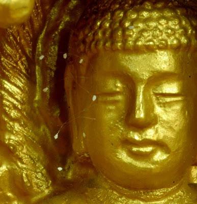 Hoa ưu đàm trên tượng Phật