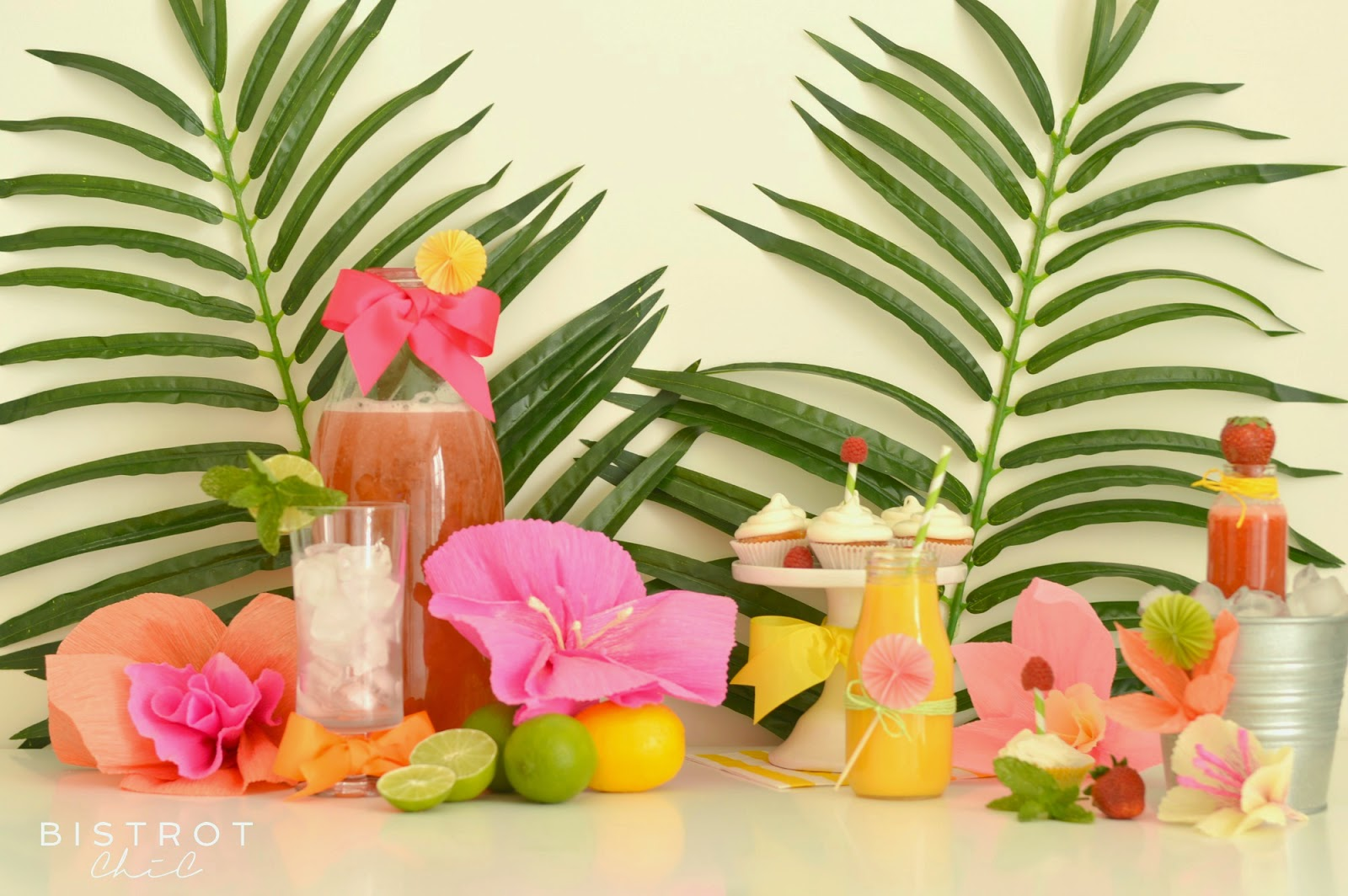 Drinks for a Summer Party Ideas by BistrotChic