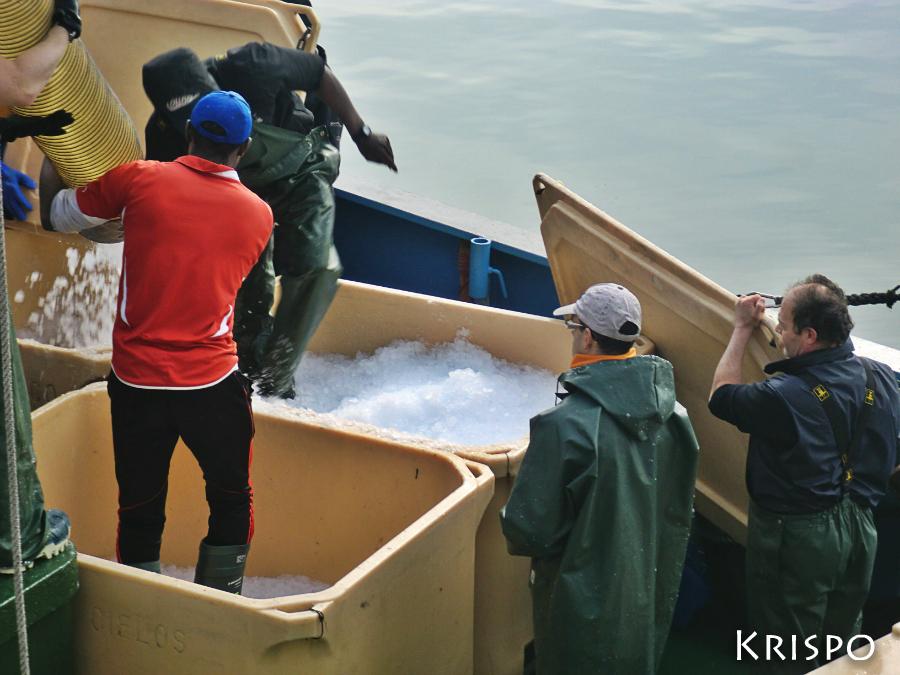 pescadores cargando hielo en barco pesquero