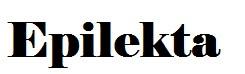 epilekta.com