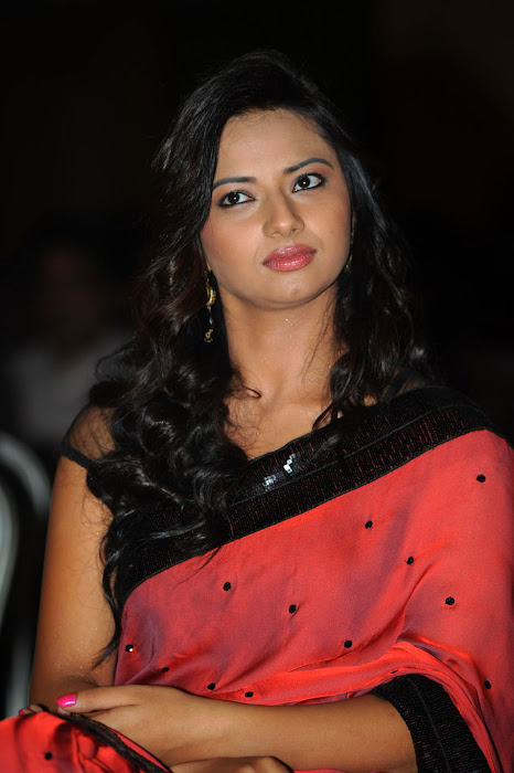 isha chawla at poola rangadu audio launch, isha chawla saree cute stills