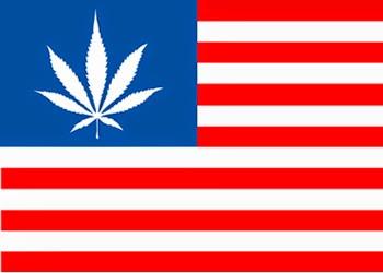 Stop Federal Medical Marijuana Raids