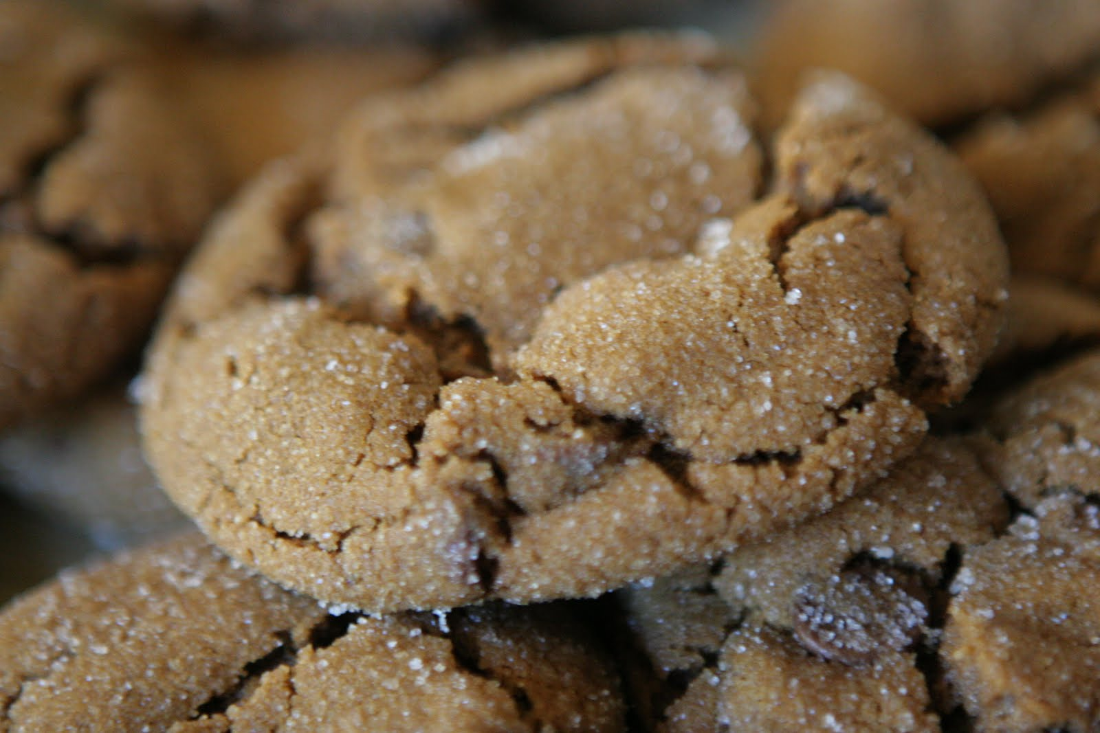 Little Sugar on the Weekend: Ginger-Molasses Chocolate Chip Cookies