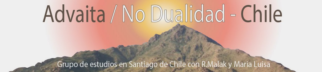ADVAITA  / No Dualidad -Chile