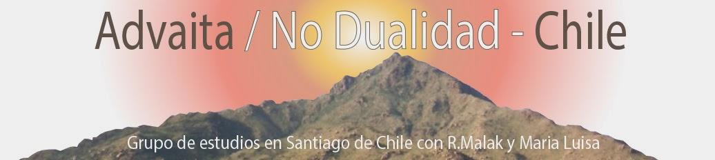 ADVAITA  / No Dualidad -Chile