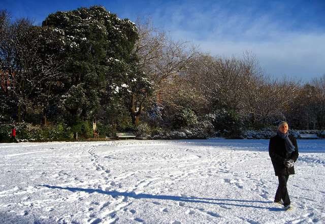 A walk in the snowy park, Dublin, Ireland