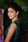 Shamili beautiful photos in green-thumbnail-14