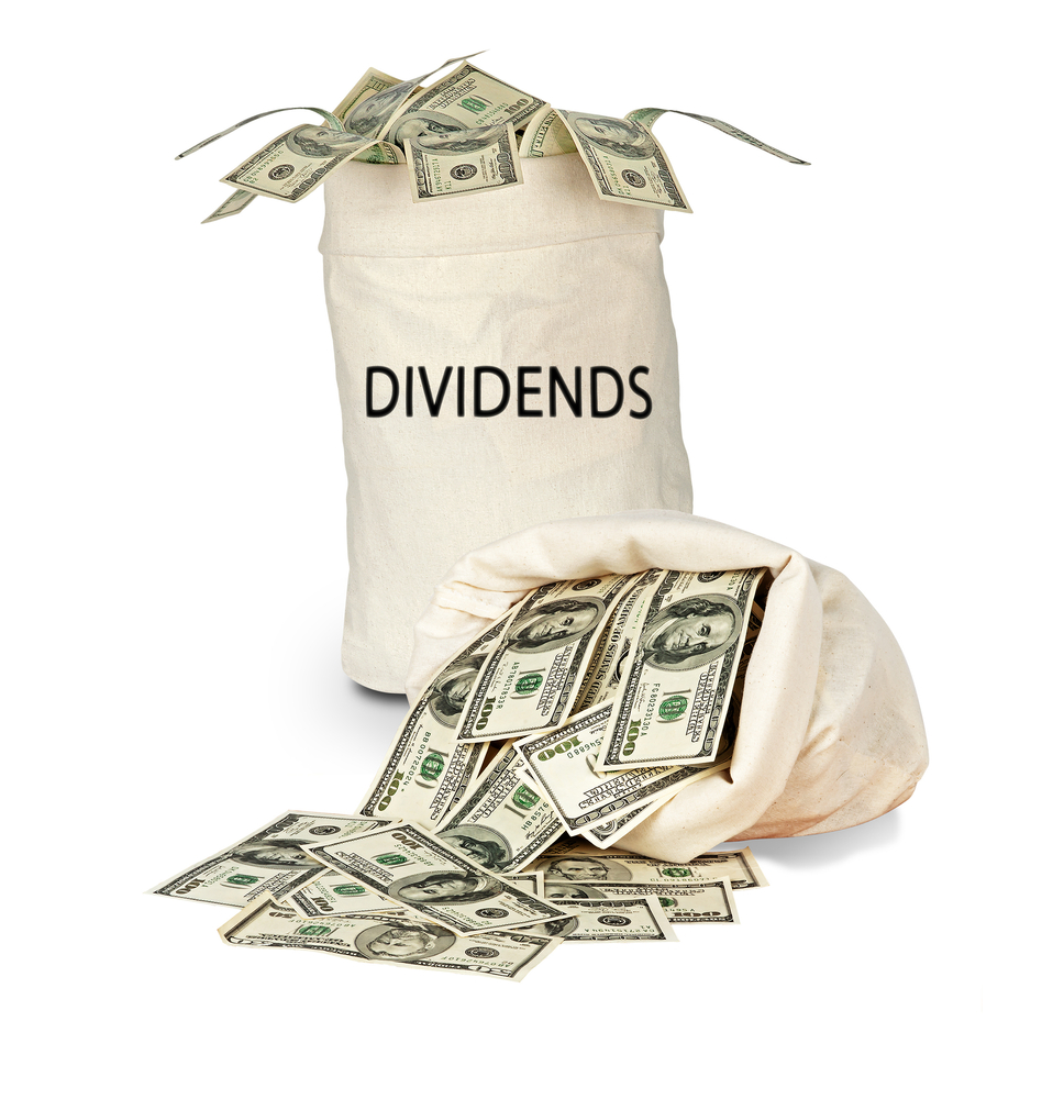 dividend payout The dividend payout ratio is the measure of dividends paid out to shareholders  relative to the company's net income.
