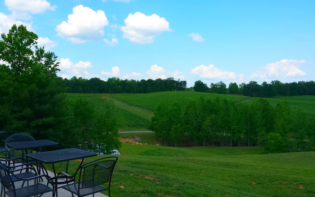 View from Jones von Drehle. NC Wine Adventures in the Yadkin Valley Wine Region. Great for a getaway for girlfriends, families, and couples. In this post, we explore the wines of six different wineries.