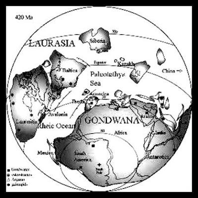 Milj. jaar gelede . diere en voëls versprei saam met die kontinente
