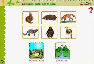 http://www.ceiploreto.es/sugerencias/A_1/Recursosdidacticos/PRIMERO/datos/03_cmedio/03_Recursos/actividades/2losAnimales/act6.htm