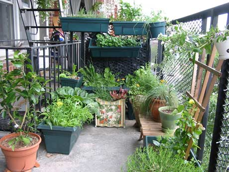 Small Balcony Garden Ideas