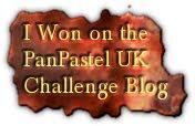 Pan Pastels challenge blog