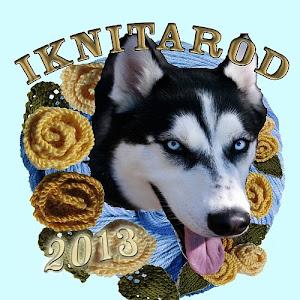 The 2013 Iknitarod