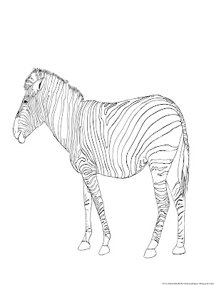 Images of zebra coloring pages