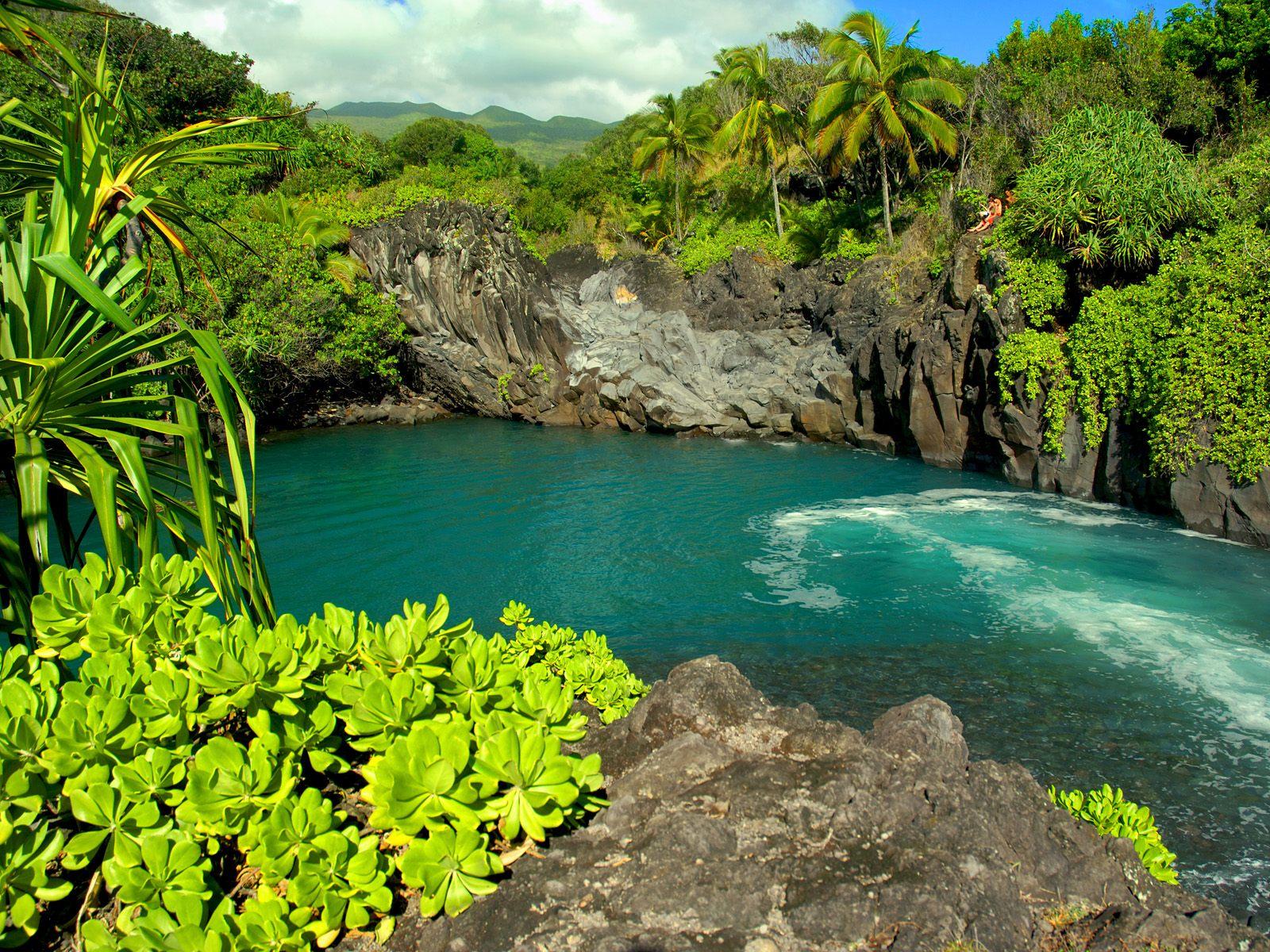 http://2.bp.blogspot.com/-A26chyUJGHI/TeZdiiEkVTI/AAAAAAAAAl8/gjPidGdnBvI/s1600/Venice_Falls_Maui_Hawaii.jpg