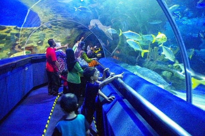 aquaria klcc homestay murah kuala lumpur sentul
