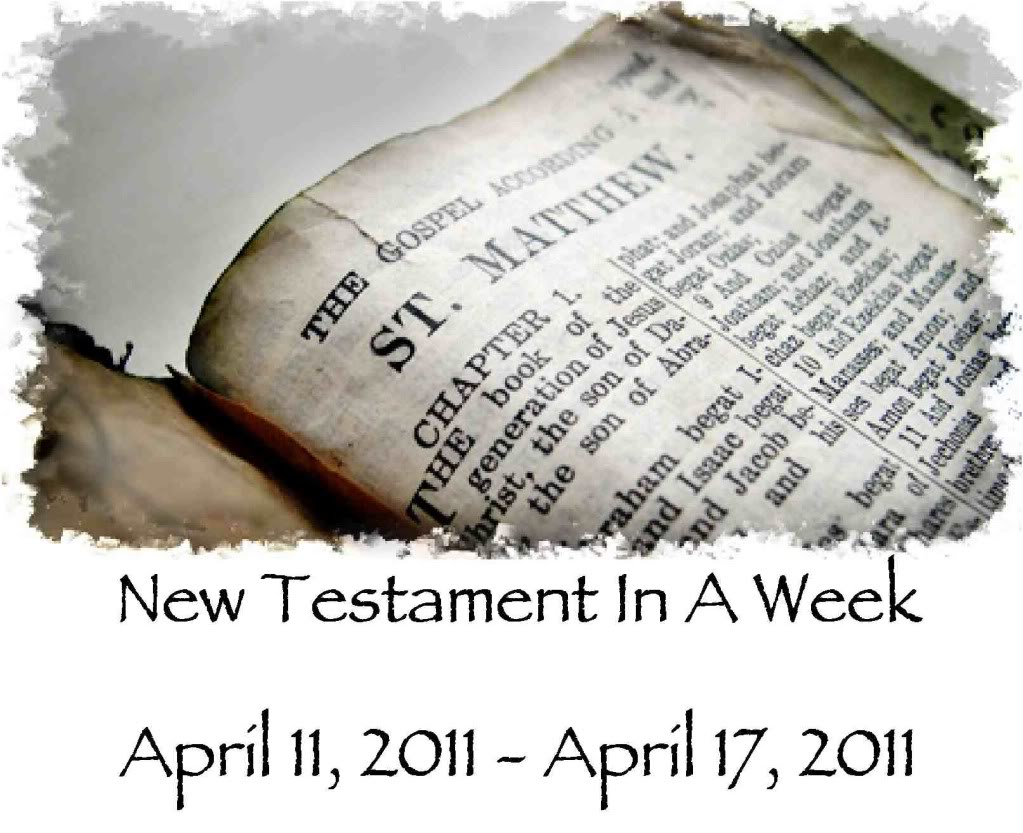 Operation Actually Read Bible: New Testament in a Week: My Progress