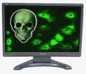 Mencegah Virus Komputer