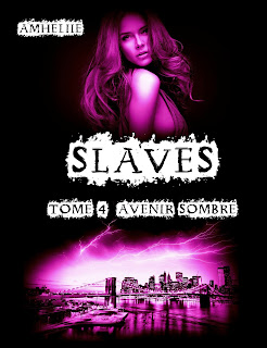 http://lachroniquedespassions.blogspot.fr/2015/11/slaves-tome-4-avenir-sombre-amheliie.html