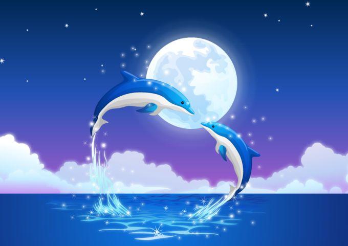 イルカの画像 p1_22