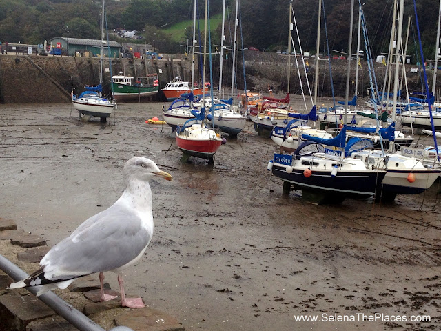 Ilfracombe, Devon, UK
