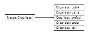 Macam Macam Organisasi
