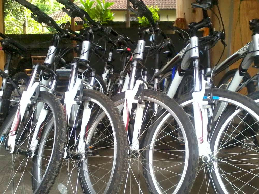 Sepeda Ubud Bali