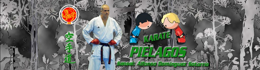 CLUB DE KARATE PIELAGOS