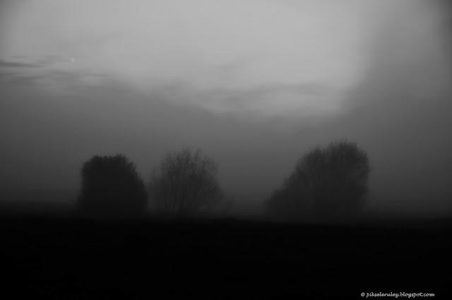 Mgła, noc, wiosna. para