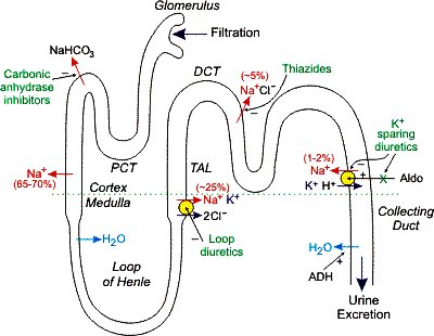 sace biology textbook stage 2 pdf