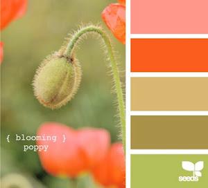 Гармоничное сочетание цвета
