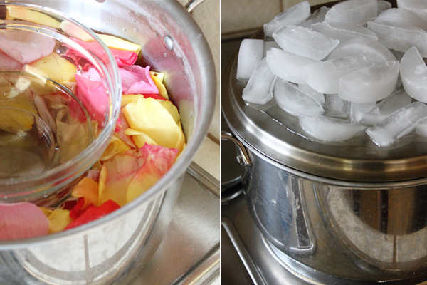 Distill rose petals with steam to make rose water at home
