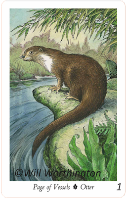 The Wildwood Tarot, Page of Vessels Otter