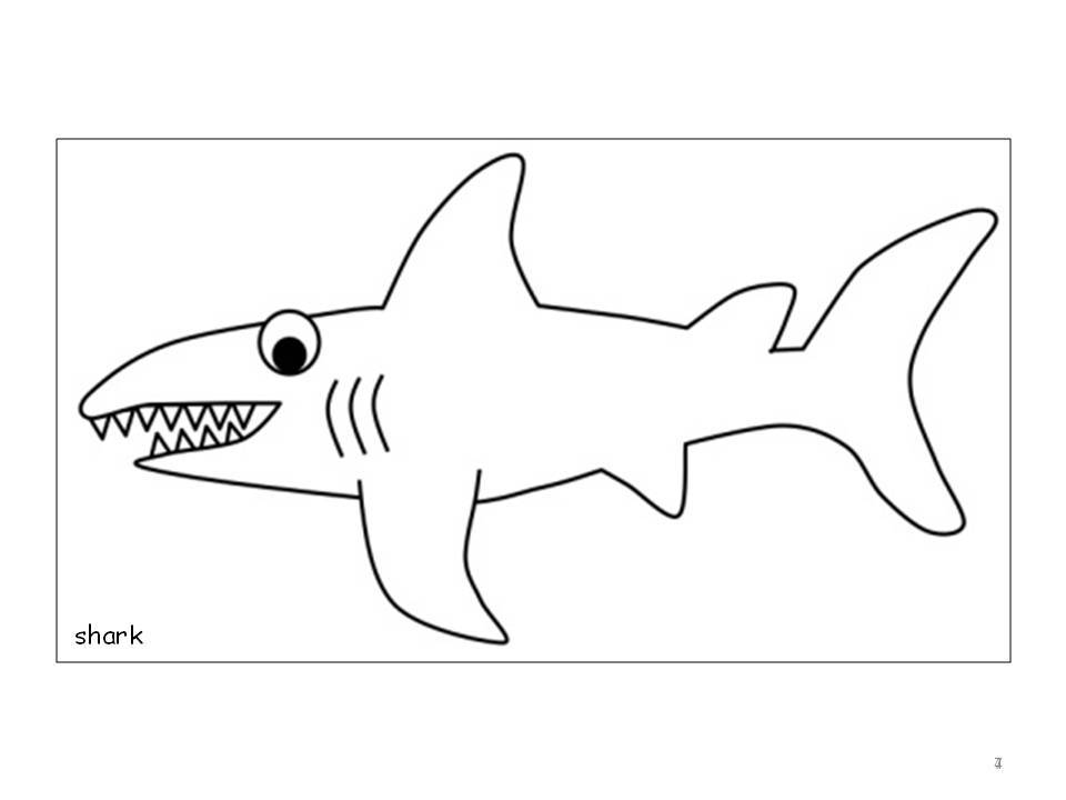 Shark Drawing Template