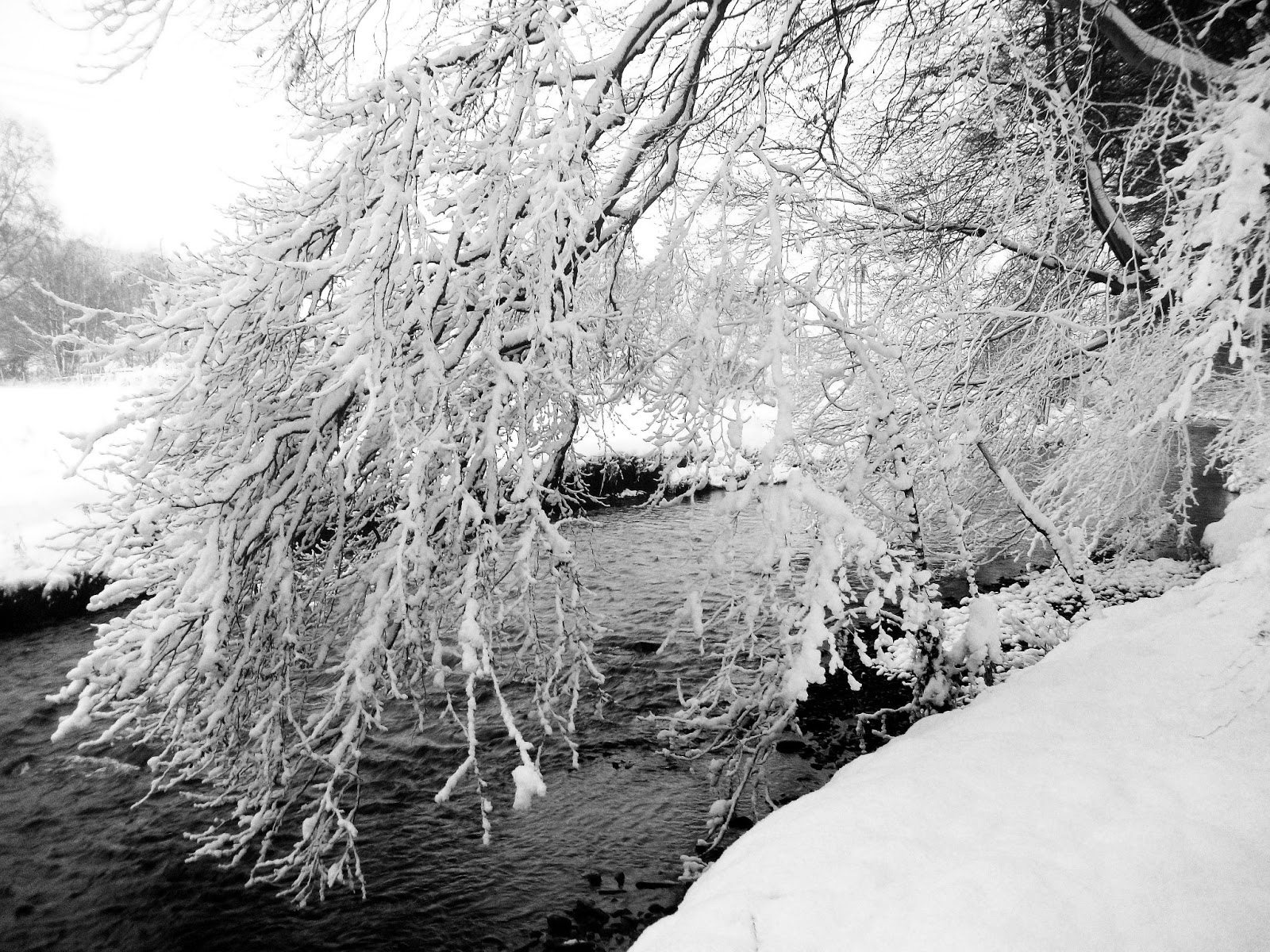 Rivertrain: Snow Path, Snow River
