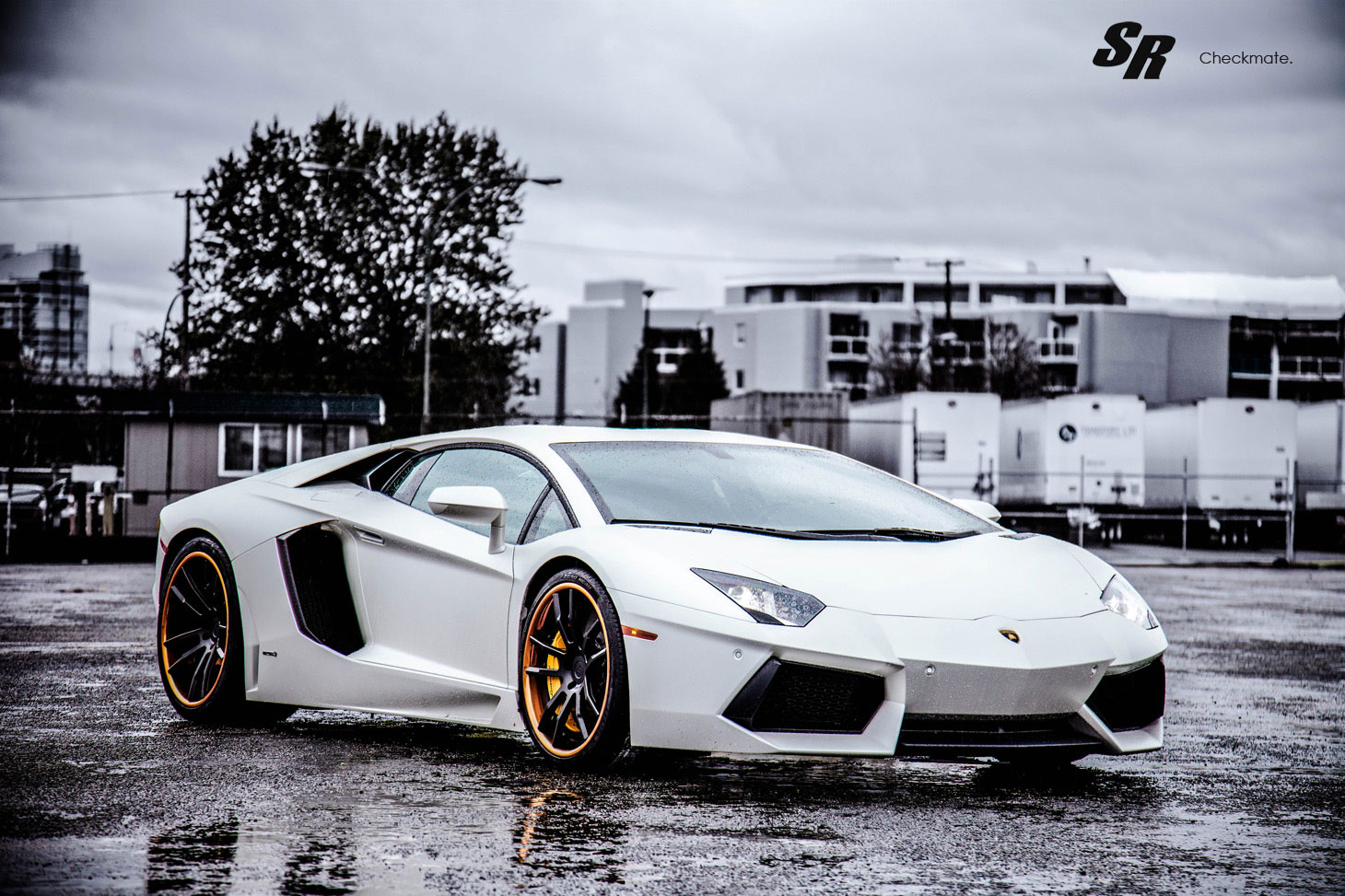 luxury lamborghini cars lamborghini aventador black and white