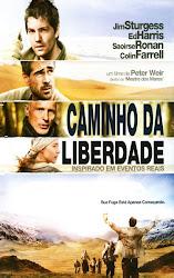 Baixar Filme Caminho da Liberdade (Dual Audio) Online Gratis